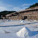 La sal, las salinas y los humedales en España